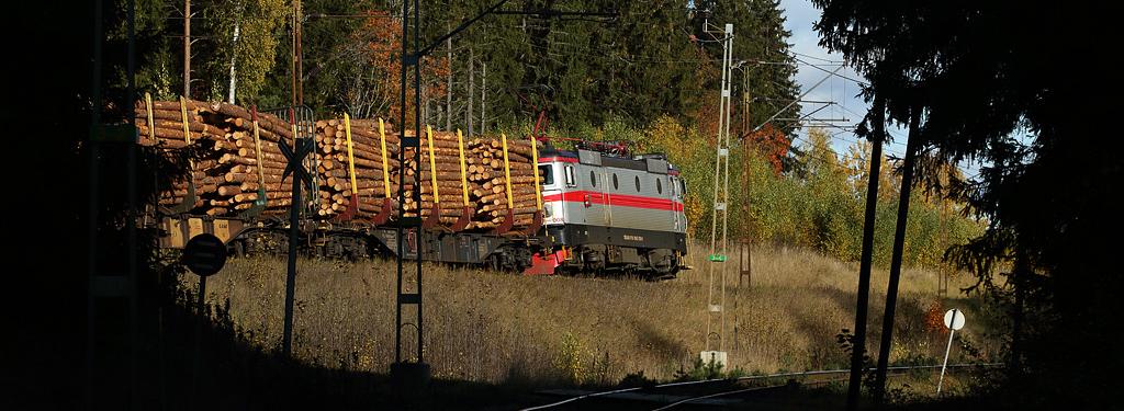 SJK är landets största förening för järnvägsintresserade. Vi samlar dem som har intresse av järnvägar och tåg. SJK ger ut Nordens ledande järnvägstidskrift, Tåg. Vi ger också ut böcker om tåg och järnvägar och anordnar resor på spåren runt om i landet och utomlands. Våra lokalavdelningar finns spridda över hela landet.